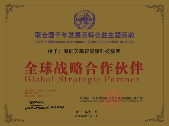 联合国千年发展目标主题活动铜牌